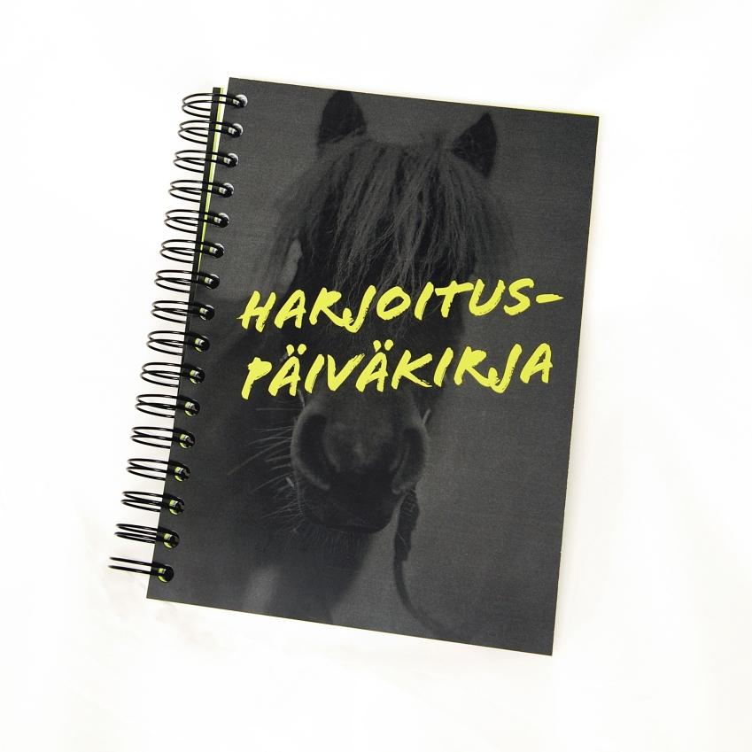 Treenipäiväkirja