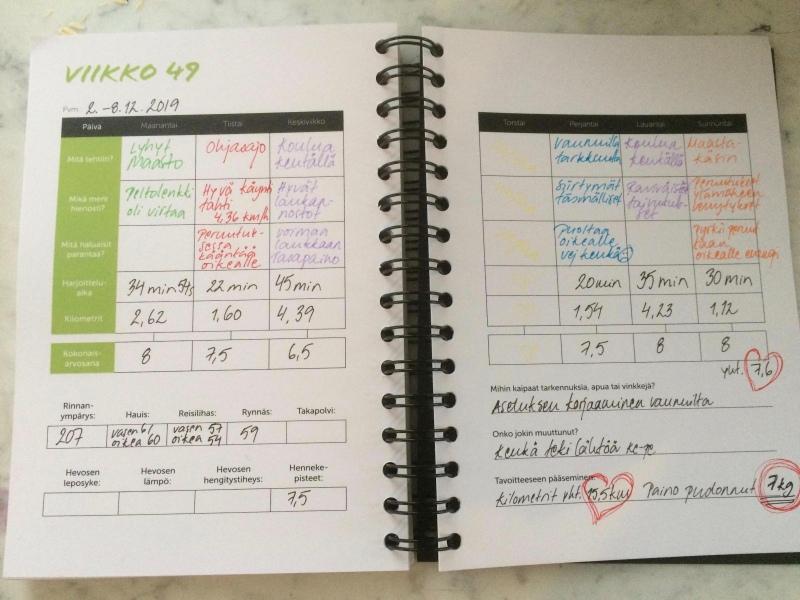 ohjeita harjoituspäiväkirjan käyttöön