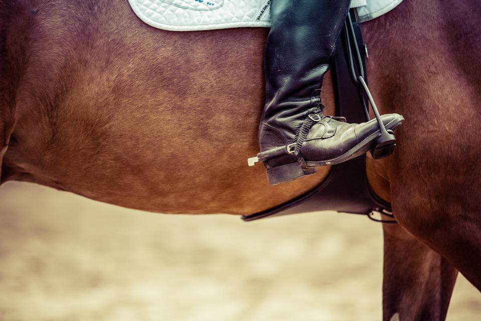hevosen kuorma