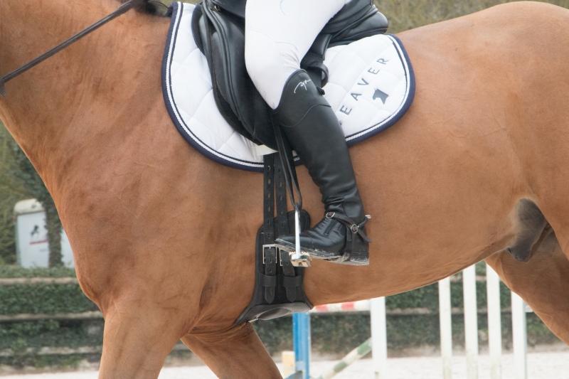 Sykevyö hevoselle